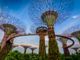 Gardens by the Bay (Singapur, Dreamstime)