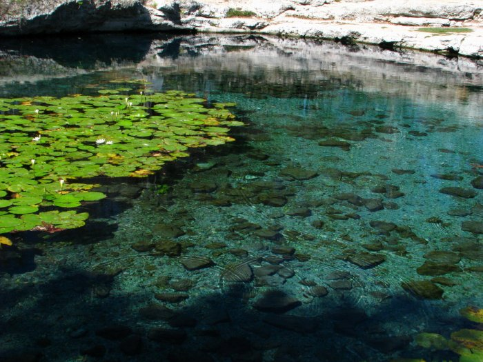 Cenote, Dzibil Chaltun (Mexiko, Sylva Vltavská)