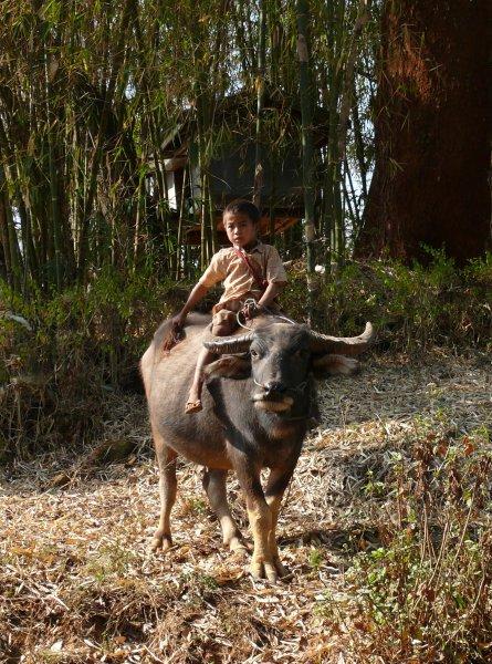 4)Samá voda -E (Barma, Jaromír Červenka)