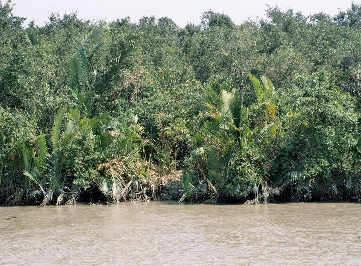 Neviditelní tygři Sundarbanu (1. část)